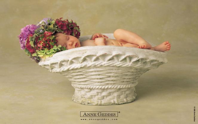 anne-geddes-official-timeline-facebook-gerber-baby-contest
